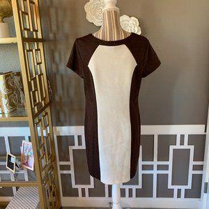 AB Studio Color Block Sheath Dress